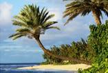 Malediwy – inne oblicze raju. Wykład otwarty w Collegium Civitas